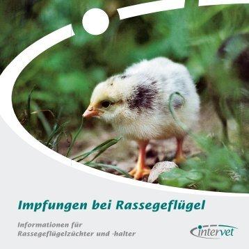 Impfungen bei Rassegeflügel - KV Wittgenstein