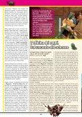 scarica pdf - Primissima - Page 6