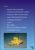 Marine Program Appunti di ecologia marina - Il Saturatore - Page 2