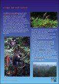 Marine Program Appunti di ecologia marina - Il Saturatore - Page 4