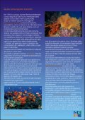 Marine Program Appunti di ecologia marina - Il Saturatore - Page 5