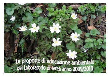 Catalogo scuole 2009 10.pdf - Laboratorio Ambientale IVREA
