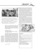 Pedagogie di pace - Conflitti Dimenticati - Page 5