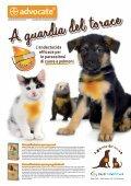 strategie dietetiche per ridurre l'odore delle feci di cani e gatti - AIVPA - Page 2