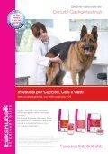strategie dietetiche per ridurre l'odore delle feci di cani e gatti - AIVPA - Page 6