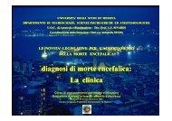 Dott. F. Puliatti - Università degli Studi di Messina