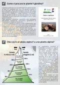 Il giardino botanico alpino del Lautaret - Station Alpine Joseph Fourier - Page 3