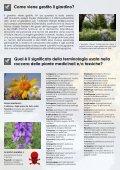 Il giardino botanico alpino del Lautaret - Station Alpine Joseph Fourier - Page 6