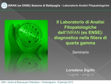 Seminario - Diagnostica nella filiera di quarta gamma - Ense