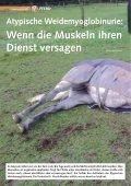Pferd 3-2010.pdf - Page 2