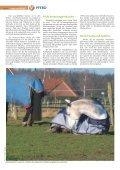 Pferd 3-2010.pdf - Page 4
