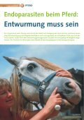 Pferd 3-2010.pdf - Page 6