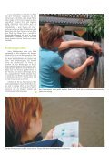 Pferd 3-2011.pdf - Page 3
