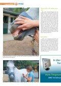 Pferd 3-2011.pdf - Page 4