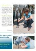 Pferd 3-2011.pdf - Page 5