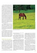 Pferd 3-2011.pdf - Page 7