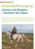 Pferd 2-2011.pdf - Page 2