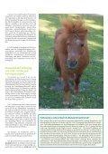 Pferd 2-2011.pdf - Page 3