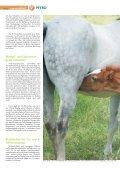 Pferd 2-2011.pdf - Page 4