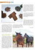 Pferd 2-2011.pdf - Page 6