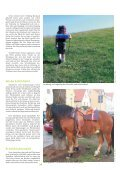 Pferd 02 2010 A4.cdr - Page 3