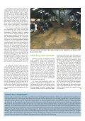 Tiergesundheit aktuell - Seite 3