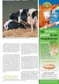 Rind 2-2011.pdf - Seite 3