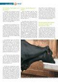 Rind 2-2011.pdf - Seite 4