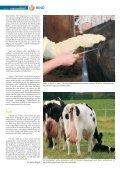 Rind 2-2011.pdf - Seite 6