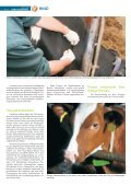 Rind 04-2012.pdf - Page 4
