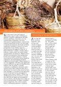 Andar per Cantine - Ischia News ed Eventi - Page 7