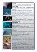 leggi il soggetto - Subaco - Page 2