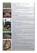 leggi il soggetto - Subaco - Page 5