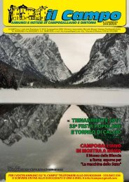 Numero 19 Giugno 2011 - Il Campo