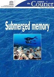 Submerged memory
