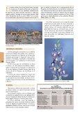 20-Reserva Faunística Chimborazo - Ministerio del Ambiente - Page 4