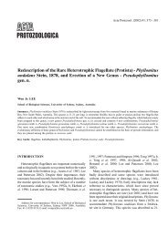Redescription of the Rare Heterotrophic Flagellate (Protista ...