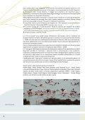 Linee guida per un uso sostenibile dei prodotti fitosanitari - Syngenta - Page 6