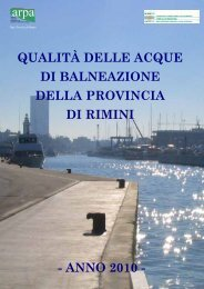 il testo integrale del report - Provincia di Rimini