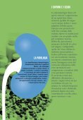 Tumore del Rene - Fondazione AIOM - Page 5