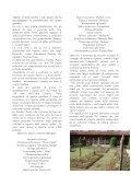 IL GIARDINO DI ENOTRIA - Clamer Informa - Page 4