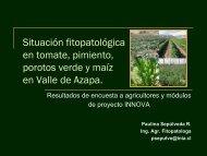 Situación fitopatológica en tomate, pimiento, porotos ... - Platina - Inia