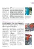 Wasserkraftwerk Rheinfelden (PDF 165 KB) - Wagner + ... - Seite 3