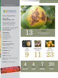Julho / Agosto / Setembro / 2011 - GTACC - Page 3