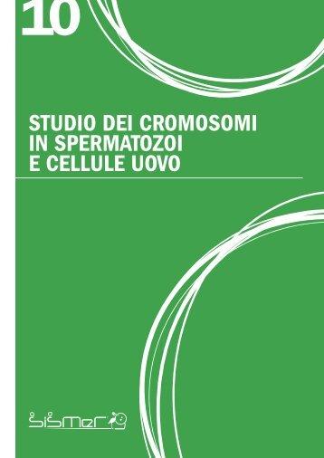 studio dei cromosomi in spermatozoi e cellule uovo - Sismer