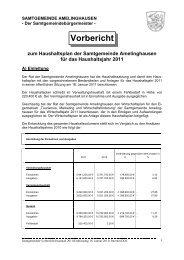Vorbericht zum Haushaltsplan der Samtgemeinde Amelinghausen ...