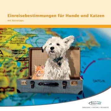 Einreisebestimmungen für Hunde und Katzen