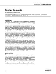 Seminal diagnostic - Jas - Journal of ANDROLOGICAL SCIENCES