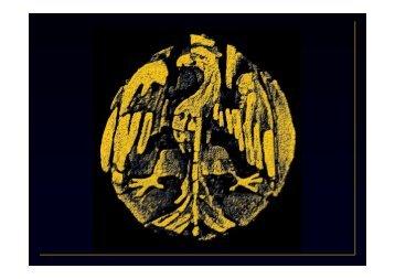Risonanza Magnetica - Tsrm Foggia