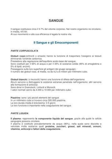 SANGUE - Marone a Colori